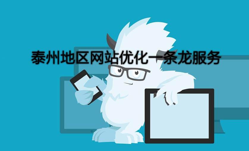 泰州网站优化一条龙服务