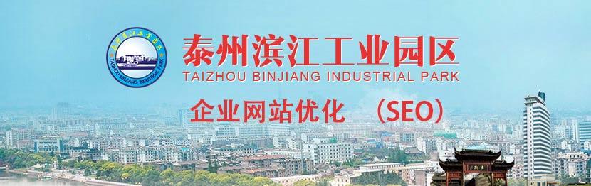 本站提供泰州滨江工业园区SEO(网站优化)服务
