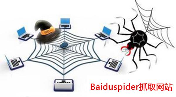 有哪些因素会导致百度蜘蛛受到限制插图