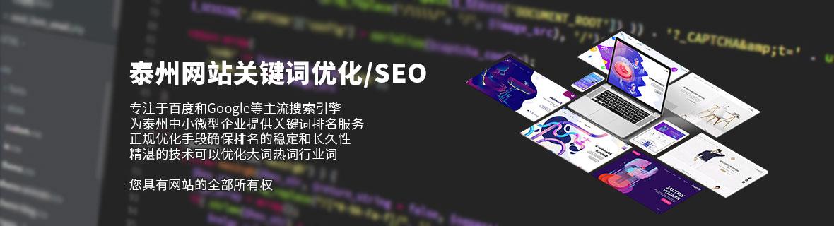 泰州网站优化/SEO服务